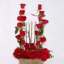 bonita-jardinera-de-36-rosas-rojas-650-pesos-300x300